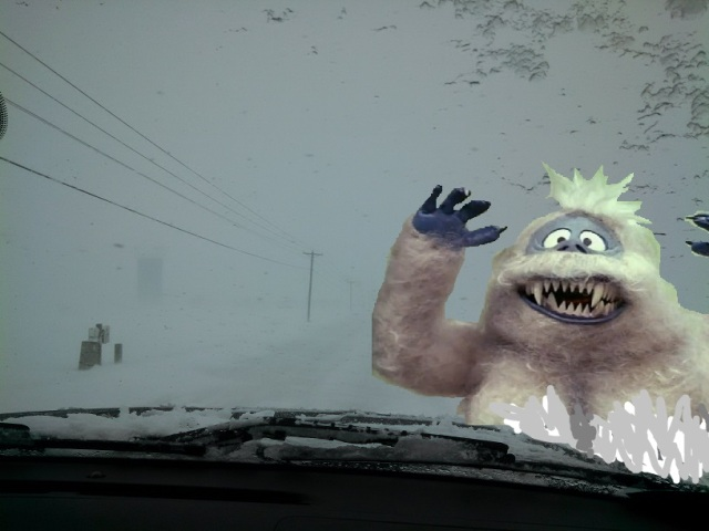 Bumbles bounce!  Off your bumper.