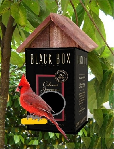 Any discriminating cardinal would feel right at home with a nice Cabernet.